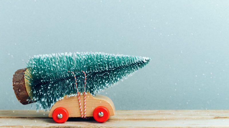 Frohe Weihnachten wünscht SEAK